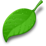 leaf_vector_test